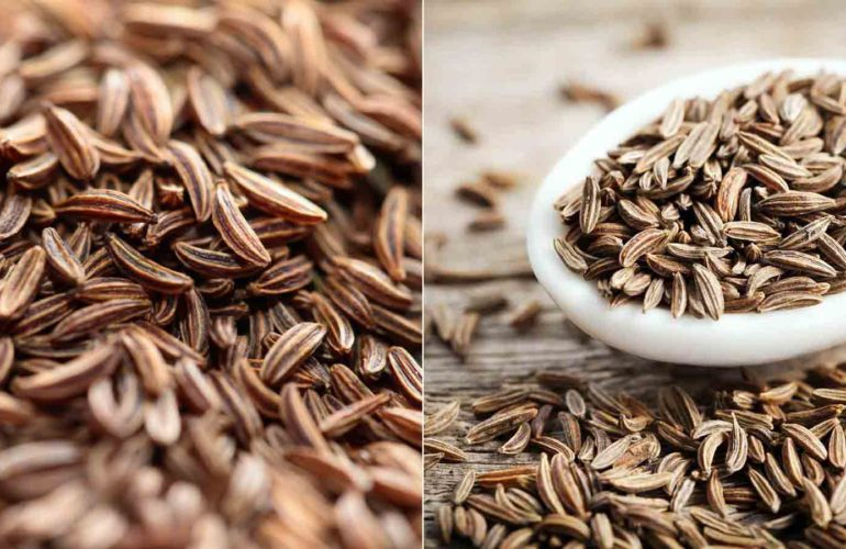 Cumin Seeds For Weight Loss