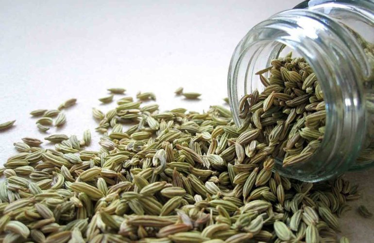 Health Benefits of Fennel Seeds (Saunf) and Weight Loss